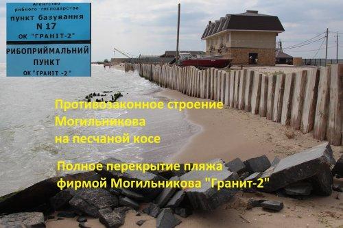 На даче Ковалевского активисты сломали забор застройщику бывшего детского лагеря (видео)