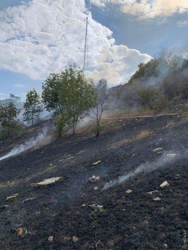 В Одессе неизвестный устроил масштабный пожар на приморских склонах