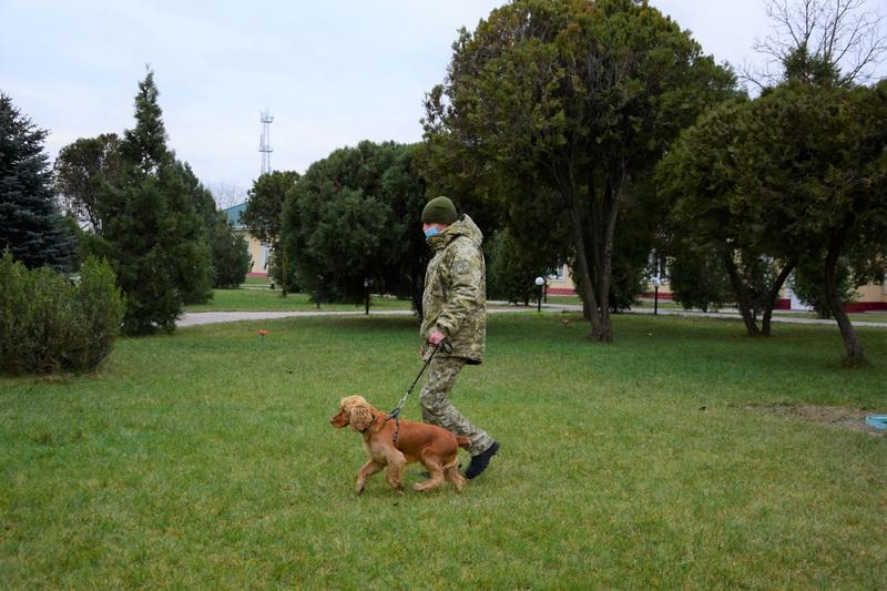 Измаильский погранотряд усилили кинологами со служебными собаками (фото)