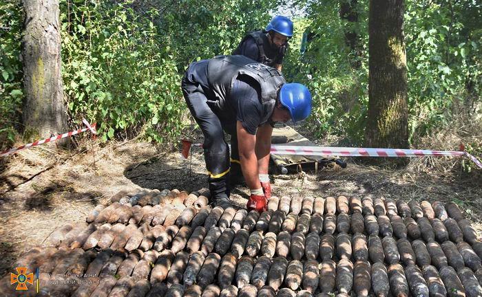 В лесу в Одесской области нашли 300 артснарядов и гранат