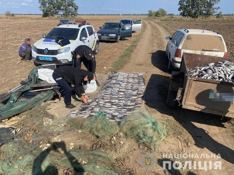 На Тузловских лиманах браконьеры выловили рыбы на 1,75 млн гривен (фото)